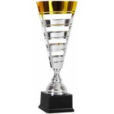 Кубок 1501